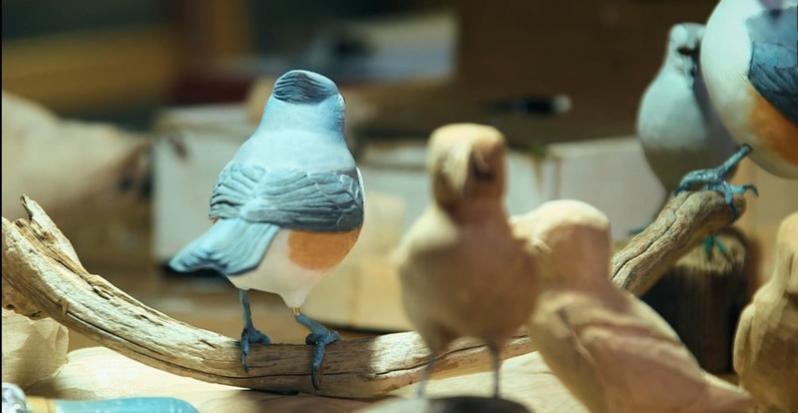 bird carver - melbourne indie film festival
